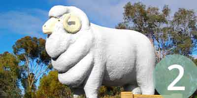 The giant ram at Wagin